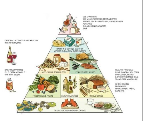 heallthy piramid