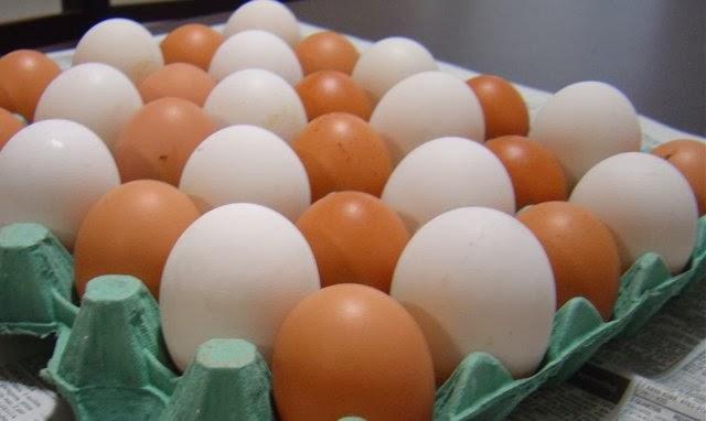 Resultado de imagem para ovo jumbo